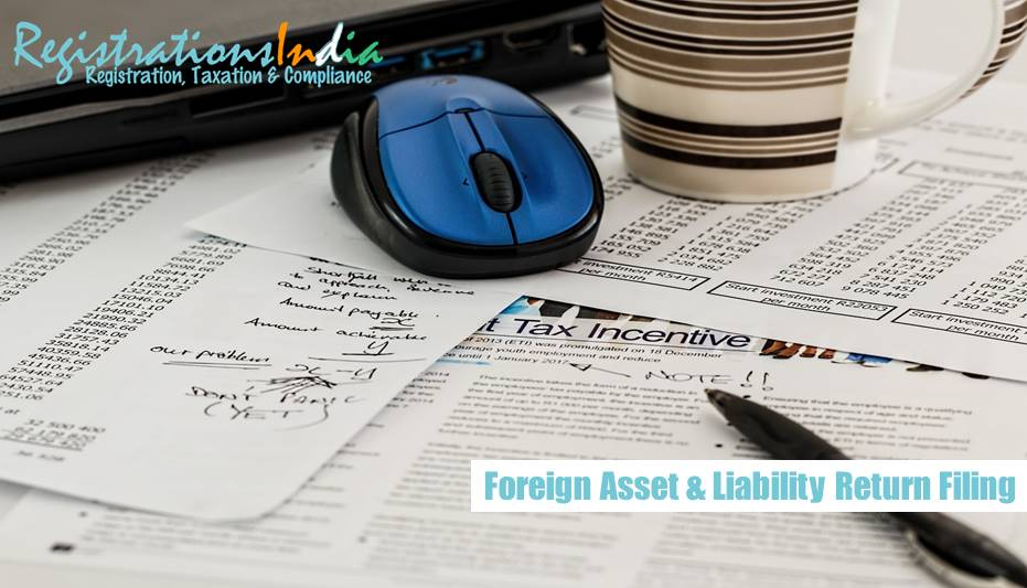 Foreign Asset and Liability return filing image