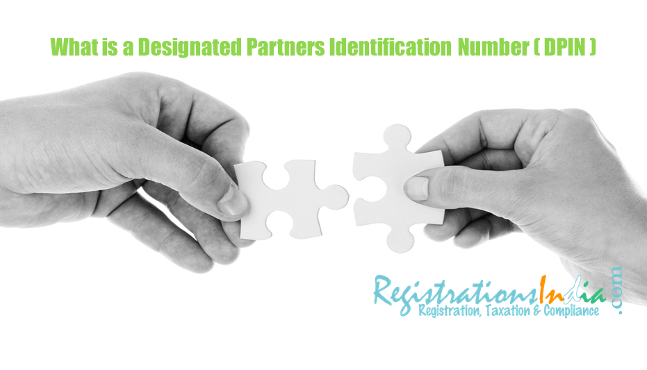 What is Designated Partner Identification Number (DPIN) image