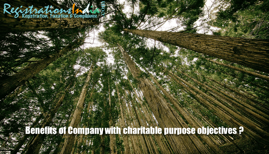 Benefits of Company with Charitable Purpose Objectives image