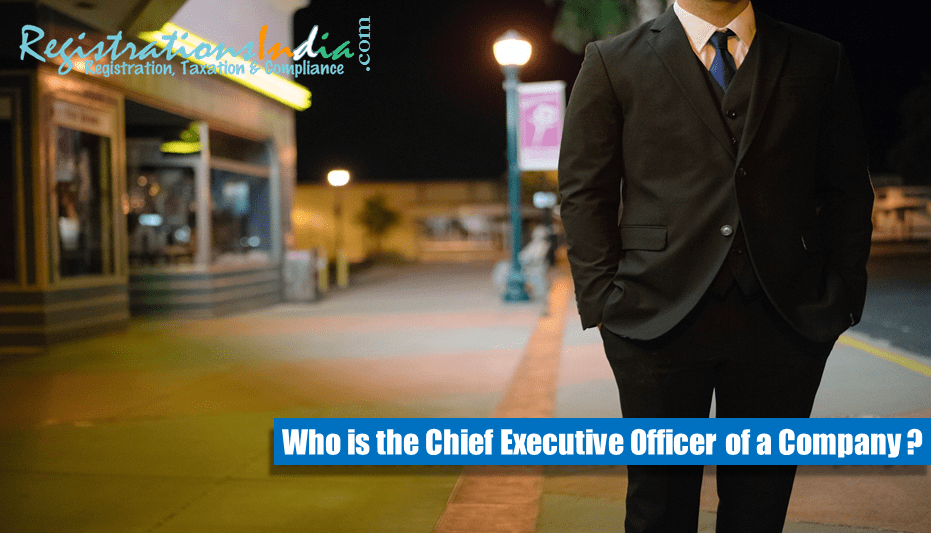 Chief Executive Officer of a Company image