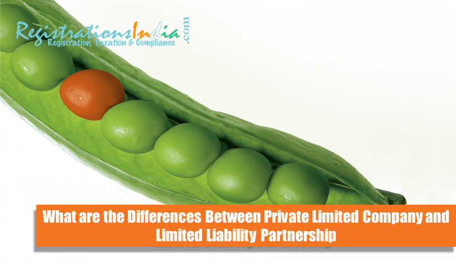 Differences Private Limited Company and Limited Liability Partnership image