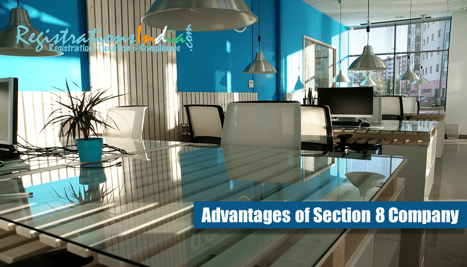 What are the Advantages of Section 8 Company?
