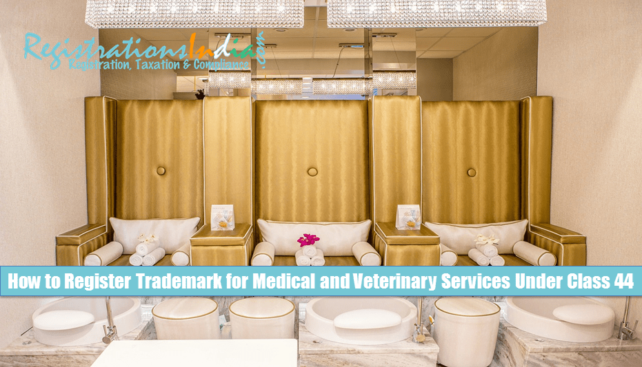 How to Register Trademark for Medical and Veterinary Services Under Class 44