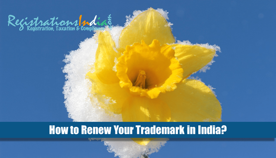 How to renew your trademark in India?