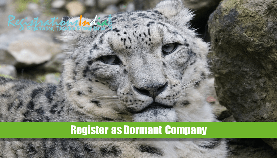 Register as Dormant Company